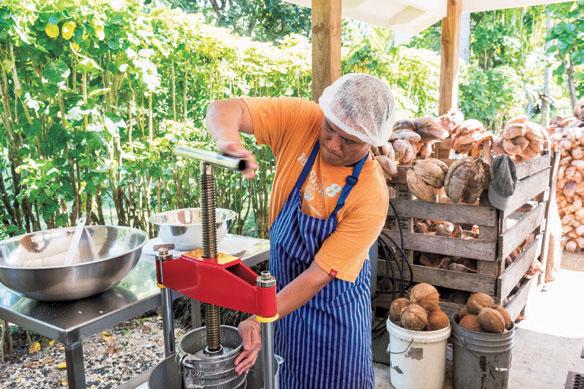名産品のココナッツオイルは、繊維を乾燥させて水分を飛ばしてからオイルを搾り取る。