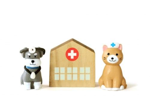 大切なペットのストレス解消法は?|ペットの健康に関する調査