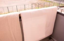【知らなきゃよかったお布団事情…】布団1平方メートル あたりのダニの数は○○匹…!?