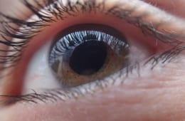 緑内障の要介護者、半数は自覚症状が出てから診断