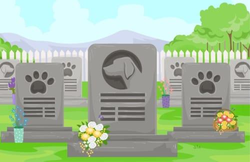 ペットが亡くなったら自分と同じ墓に埋葬したい方は約7割!