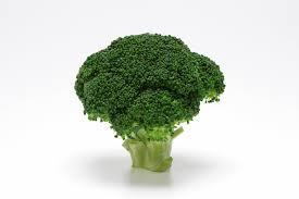 免疫力を高めるために摂取すべきだと思う野菜とは…?|免疫力向上のために取り組んでいること第1位は「食事・栄養に気を配っている」!