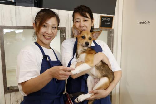 ボランティアスタッフの石野清美さんと菅野真実さん。菅野さんは5頭の猫を飼育中