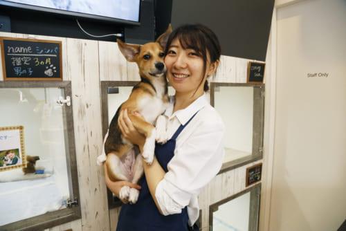 チーフの立崎真紀さんは「ペットと暮らす幸せのお手伝いができて嬉しい」