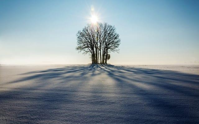 孤独をポジティブに|『続・孤独のすすめ-人生後半戦のための新たな哲学』