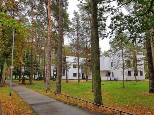 木立の中にグロピウス設計の「マイスターハウス」が4棟並ぶ。クレーとカンディンスキーは同じ二戸建て住宅に暮らした。