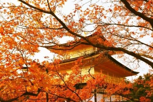 3位(同率)京都府 金閣寺(156票)