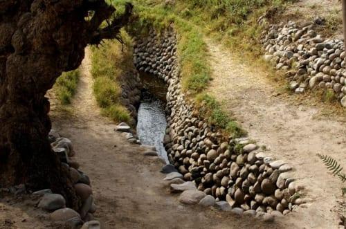暗渠部分だけでなく、小川のような開水路区間もある