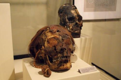 敵の首を加工して作ったナスカ時代のトロフィー・ヘッド/アドルフォ・ベルムデス・ヘンキンス・イカ地方博物館所蔵