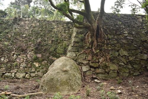 洲本城東の丸石垣。仙石秀久によって築かれたと考えられ、洲本城に現存する最古の石垣