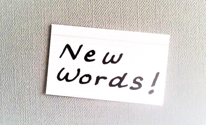 ペインポイント、ディープステート、スティンガー? 米語辞典から学ぶ新しい英語(3)【世界が変わる異文化理解レッスン 基礎編32】