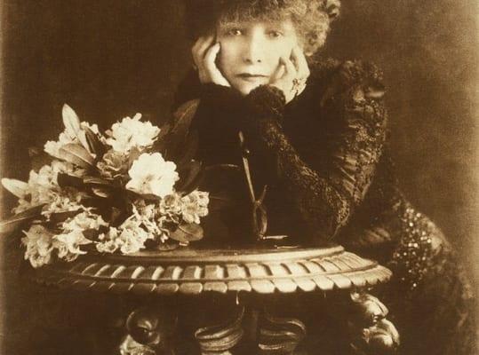 C.W.ダウニー《街着姿のサラ・ベルナール》1902年 個人蔵