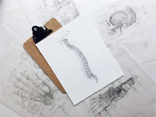 「ねこ背矯正のプロ」が教える、曲がった腰を改善するセルフケア|『一生曲がらない背骨をつくる 姿勢の教科書』