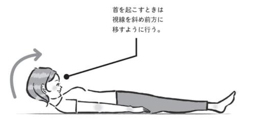 首のトレーニングの実行