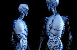 腸に本来の力を発揮してもらうために『医師が教える 1分腸活』
