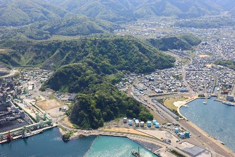 金ヶ崎城全景 現在は周囲が埋め立てられているが往時は海に突き出た岬だった。