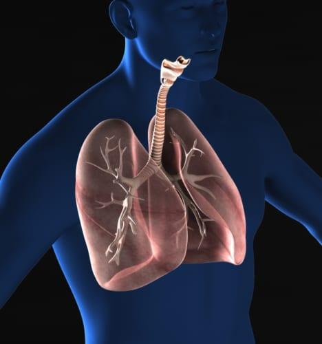 喫煙が原因で約530万人もの患者がいる恐ろしい病気の正体とケア|『COPDのことがよくわかる本』