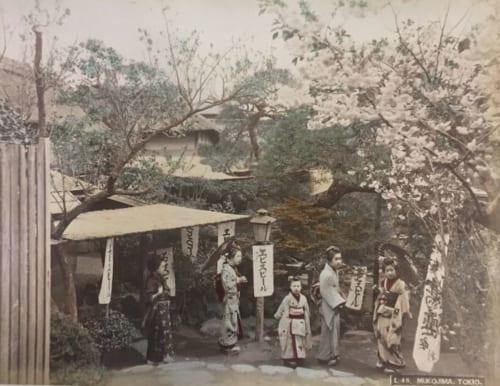 制作者不明《(東京向島)》 明治20年代 鶏卵紙に手彩色 東京都写真美術館蔵