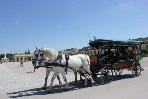 シェーンブルン宮殿の中を走るフィアカー