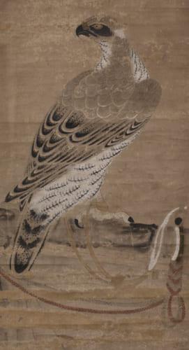 土岐頼芸が描いたと伝わる鷹の図(南泉寺蔵)