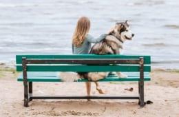 【ペットが亡くなったときのこと考えてますか?】ペットを飼っている方の4人に1人は、ペットが元気なうちから亡くなったときの準備をしていると回答…!