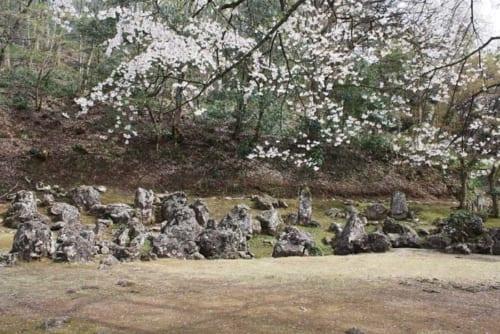 発掘された義景館の高台の庭園(特別名勝指定)。