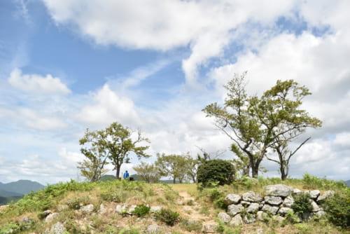 黒井城本丸には、自然の石を荒々しく積み上げた野面積みの石垣が残る