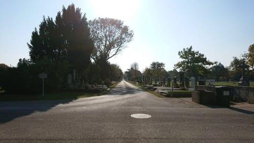 ウィーン中央墓地、解剖者墓地方面