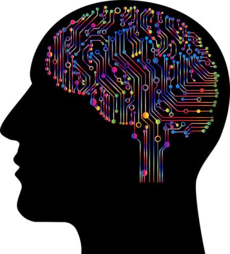 【ビジネスの極意】IQが高い人が必ずしも成功するわけではない