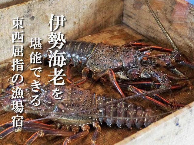禁漁 期間 海老 伊勢