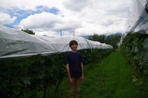 山梨・塩山という地に生まれ、ここでワインを造り続けていく