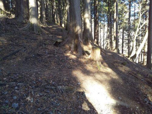 丹沢山の櫟山〜栗ノ木洞(関東 / 神奈川)