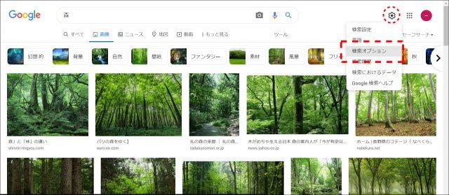 Google画像検索のオプション変更